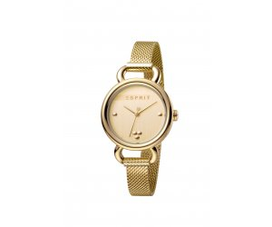 Hodinky ESPRIT Play Gold Mesh